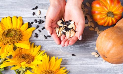Reproducción de plantas (semillas)